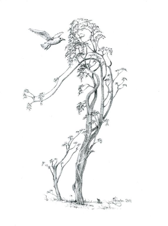 Tree Dancers   Where The Beauty Of Trees And The Wonder Of Womanhood Join  Together   Mark Johnson Fine Art